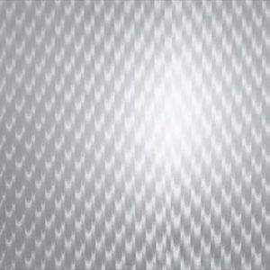 V2081-400x570